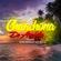 La Chanchona De Arcadio Mix Vol.2 - Star DJ Ft. DJ Alex Editions (IM) image