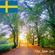 The Jam Jar Origins: Sweden image