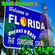 Bass Shaker 2  ( Welcome to Florida ) - Breaks n Bass mix image