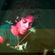 EveHive DJ Set @ BRUK 2 Anos image
