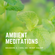 Ambient Meditations Season 2 - Vol 40 - Mint Julep image