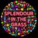 What So Not - Live @ Splendour in the Gras 2016 (Australia) Full Set image