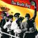 The Beatle Bug (Ep 12, We Love Los Beatles Pt 2: Ft. Javier Adolfo Iglesias) image