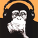 Mellow Monkey image
