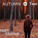 Man of Luma - Autumntape 2017 image