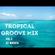 Tropical Groove Mix vol.2 [DJ WATAYA] image