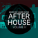 HARD KICKS - After House Vol II image
