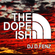 DJ D.Fenz - The Dope Ish (All-Vinyl) (INCL: Jurassic 5, Kev Brown, P.U.T.S., Count Bass D & more) image