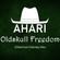 Oldskull Freedom (Ahari Oldschool Dubstep Mix) image