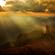 Sunrise Mix image