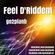 Feel D'Riddem image