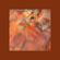 @iamsplashley - Amapiano Mini mix image