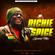DJ PRINCE - RICHIE SPICE [SPECIAL] image
