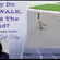 OAC 335 Why Do Geese WALK Across The Road? image