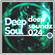 Deepsoul - Deepsoundz 024 image