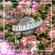 Globe Ludo w/ Lazer // 09.12.18 image