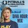 Javin - NOV 2020 Pitbull's Globalization mix 11.23.20 @djjavin image
