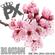 PX - BLOSSOM - PROMO MIX image