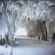 DJ Tuatara - DI Winter Solstice 2015 image