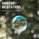 Ambient Meditations S2 Vol 43 - The Orb image