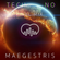 TECHNO - Pure Vinyl Mix presented by MAEGESTRIS image