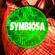 Symbiosa @ WNUB 88.3 (A Night in My Backyard) Live Mix (DJ Set) image