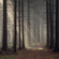 Martin Nonstatic - Walk Into The Soundforest image