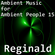 Ambient Music for Ambient People 15: Reginald image