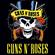 Guns & Roses Grandes Exitos image
