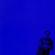 Tout Est Bleu image