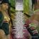 KingHorror Sound - Take The City 2014 [DanceHall Edition] image