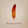 Rezonate @ Nocturne image