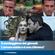 IL SONDAGGIONE DEL GIOVEDI: amore romantico o disilluso cinico? image