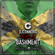 @DJCONNORG - THE BEST OF BASHMENT (FEAT. VYBZ KARTEL, MAVADO, SPICE, POPCAAN, AIDONIA + MORE) image