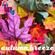 autumn breeze image