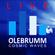 Dj OleBrumm LIVE - ProgressiveHouse - FridayNightInn 02 image
