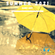 Summer 2021 (rainy edit) image