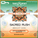 #IndiaInTheMix005 (Bright Side) - 11. Sacred Rush image