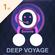 Deep Voyage image
