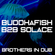 Buddhafish B2B Solace - Brothers In Dub image