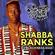 En La Mix - Celebrando a Shabba Ranks image
