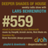 Deeper Shades Of House #559 w/ exclusive guest mix by BRIAN BURNSIDE image