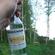 Kesäuni (Finnish Jazzy Schlager Mix) image