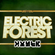 Electric Forest 2017 - Zomby's Forest image