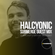 Halcyonic (100% Production) - Submerge Guest Mix (SBMRG08) image