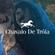 Chavalo de Tróia: Gazelle Twin image
