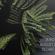 RROBB-TECHNOMIX-AUGUST-2013 image