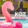 K-oz #LiveAtZanzibar image