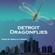 Detroit Dragonflies 2 image
