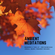 Ambient Meditations S2 Vol 47 - Jim Fairchild (Small Isles / Modest Mouse) image